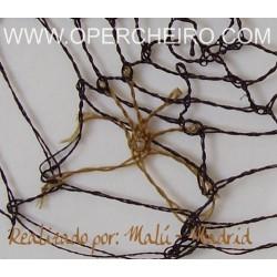 Tela de araña con araña